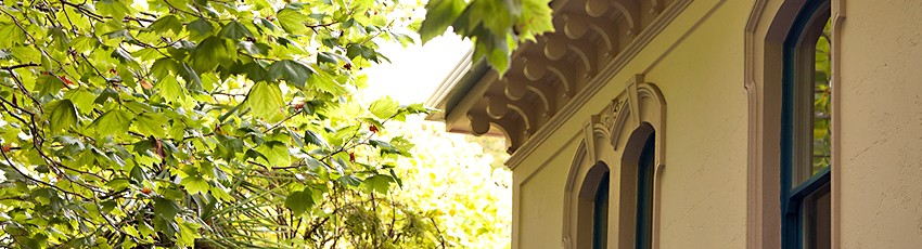 Detail of one of the old merchant houses on Symonds St with leafy foliage